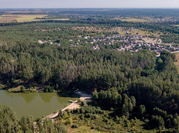 КГ Лесное Озеро  фото 138259