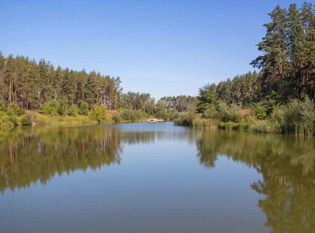 КГ Лесное Озеро  фото 138265