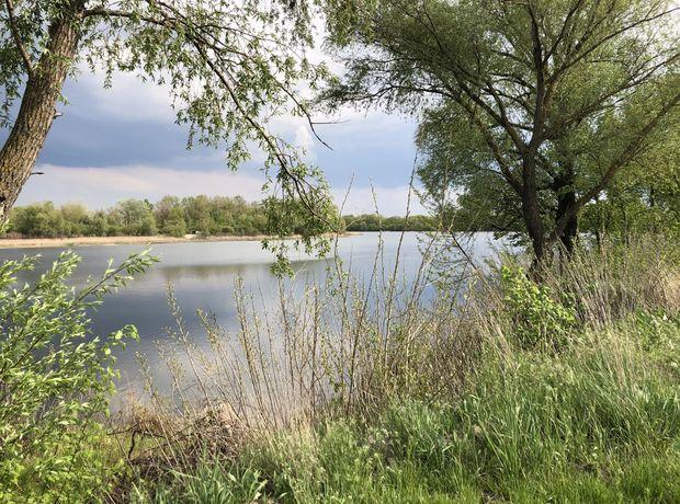 КГ River Garden  фото 216654