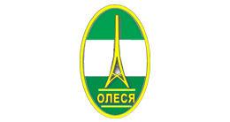 Логотип будівельної компанії Олеся