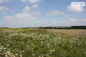 Куплю землю сельскохозяйственного назначения на Березиной без посредников
