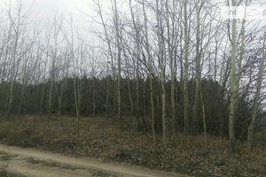 Продается земельный участок 40 соток в Киевской области
