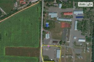 Здається в оренду земельна ділянка 50 соток у Вінницькій області