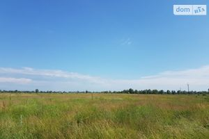 Здається в оренду земельна ділянка 215 соток у Київській області