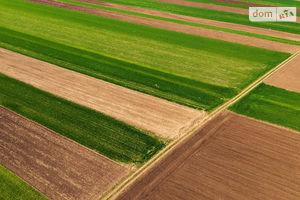 Сдается в аренду земельный участок 2 соток в Ровенской области