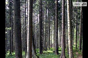 Продается земельный участок 45 соток в Донецкой области