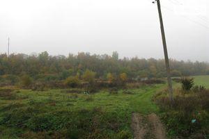 Продается земельный участок 150 соток в Закарпатской области