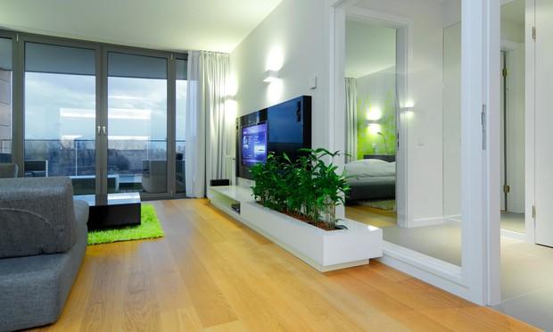 7 лучших идей озеленения квартиры этой весны