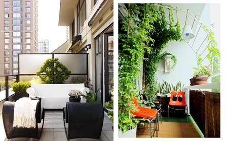 Декорируем балкон растениями: практические советы
