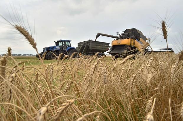 Изменились правила наследования земельных участков для фермеров