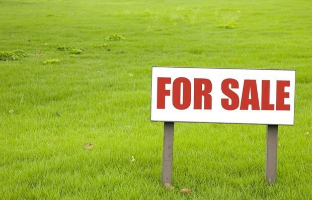 Как выгодно продать земельный участок