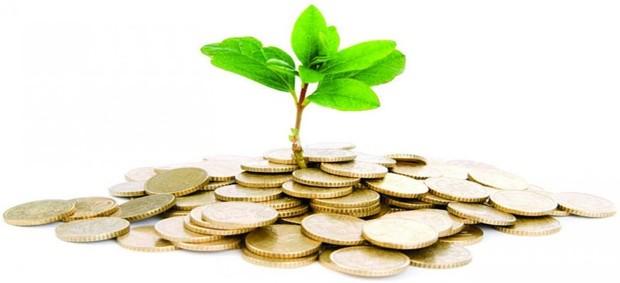 Некоторые предприятия могут освободить от уплаты земельного налога