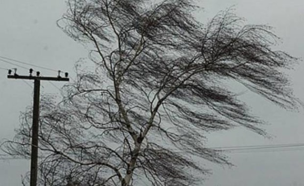 Непогода обесточила 88 населенных пунктов в 8 регионах Украины