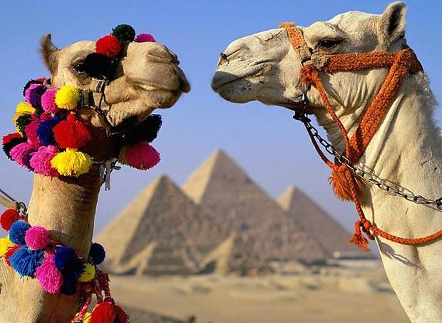 С 1 мая подорожают туристические визы в Египет
