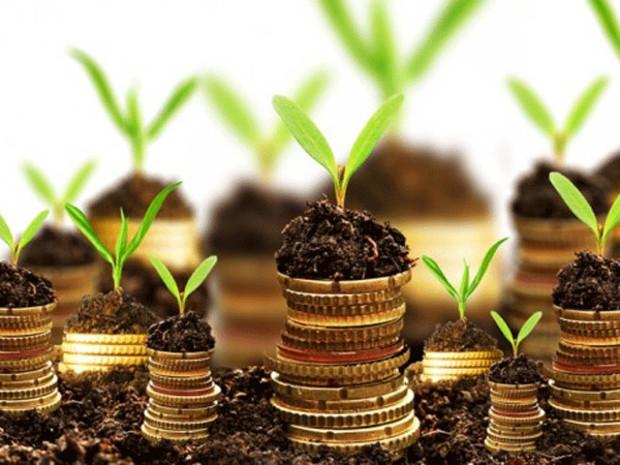 В Крыму инвесторам предложат купить 164 земучастка