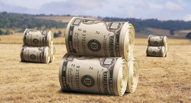 В Украине продано 366,8 га земель на сумму 433,34 млн. грн.