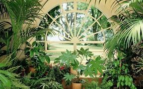 В Виннице создадут Зимний сад в здании театра