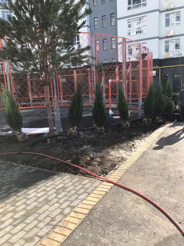 У Житловому будинку №1 роботи з повного озеленення двору вже на завершальній стадії.