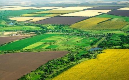 142 тыс. га земель за пределами населенных пунктов передали в собственность ОТГ