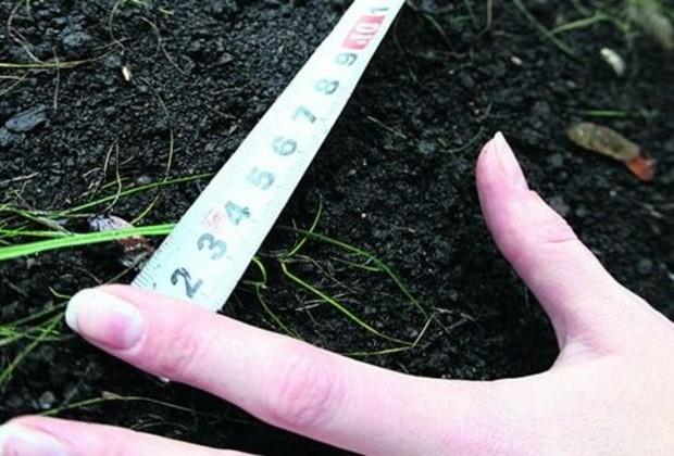 5 млрд. грн. потратят на обозначение границ земельных участков