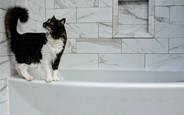 Ергономіка ванної кімнати: 4 правила оформлення