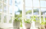 Как создать оптимальный микроклимат в квартире