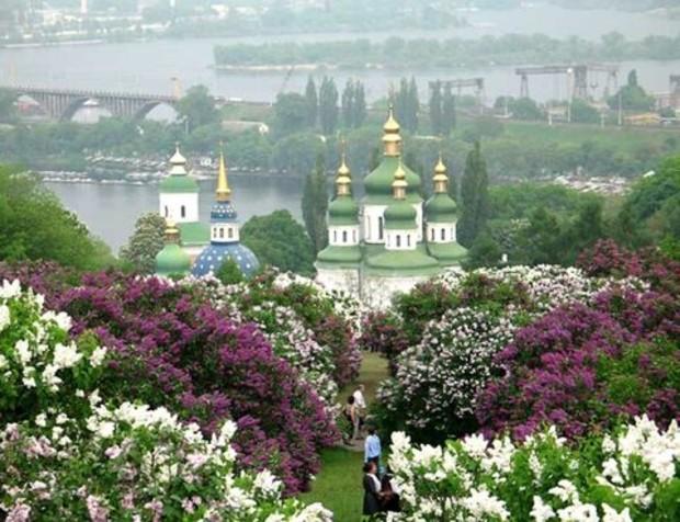 Ботанический сад лишился части территории