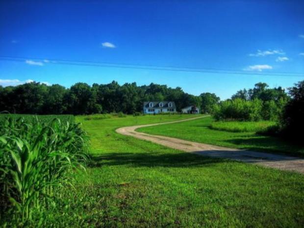 Чиновникам выгодно существование теневых схем продажи сельхозземель