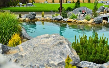 Декоративный бассейн на даче