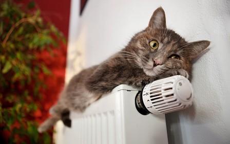 Для роста тарифов на отопление в декабре нет оснований – Нафтогаз