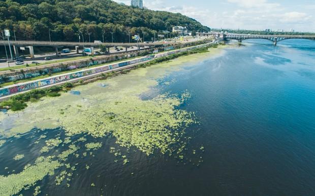 Для збереження річок хочуть заборонити пральні порошки з фосфатами