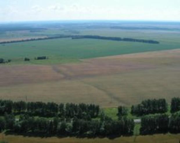 Эксперты критикуют внедрение рынка земли в Украине
