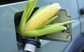 Езда под градусом. Законопроект о спиртовых бензинах приняли в первом чтении