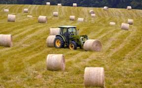 Фермеров не обяжут покупать землю после реформы