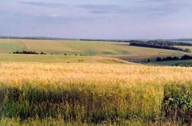 Государственный земельный банк заработает с 2012