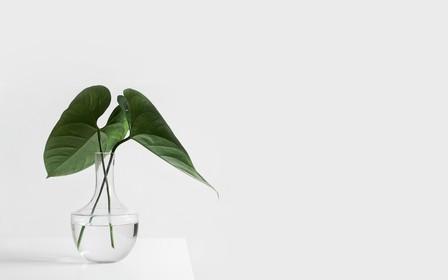 Идеи для декора квартиры