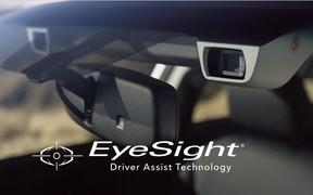 IIHS: Subaru Forester названо абсолютним переможцем у рейтингу безпеки легкових автомобілів.