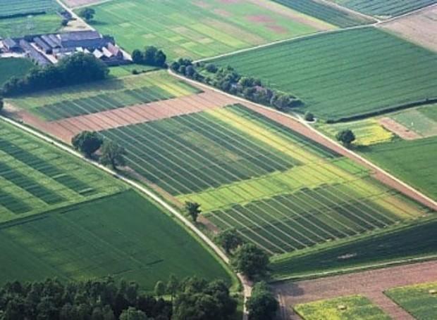 Инвентаризацию  украинской земли проведут за 2 года