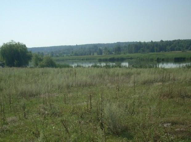 Использование сельхозучастков Киевской области подорожает
