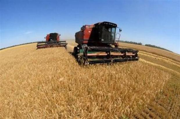 Исследование: украинские земли одни из самых дешевых в мире