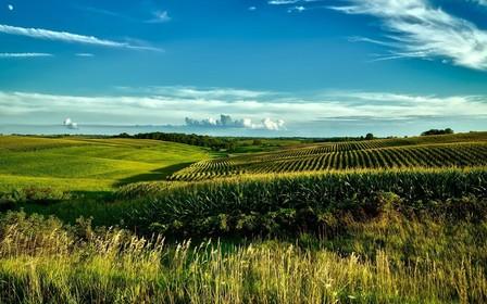 Изменили порядок возмещения убытков землевладельцам