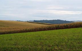 К концу года Госгеокадастр инвентаризирует 1 млн га с/х земель