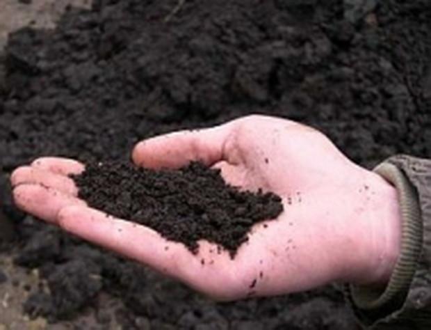 Кабмин сократит средства на выдачу госактов на землю в десять раз