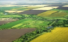 Кабмин утвердил постановление о передаче с/х земель общинам