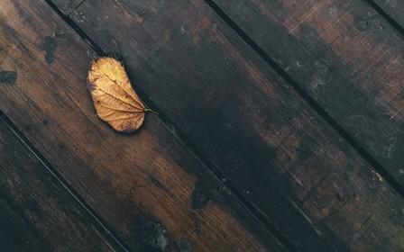 Как обновить деревянный пол: 10 способов