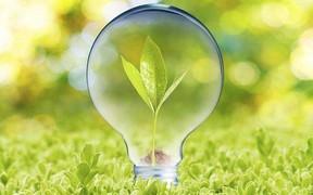 Как продавать электроэнергию по «зеленому» тарифу