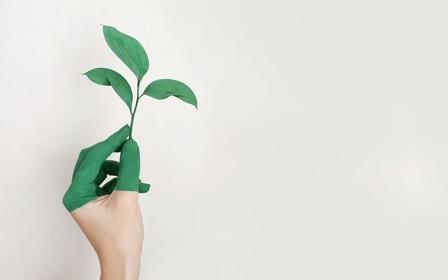 Какие средства для дома считаются экологичными