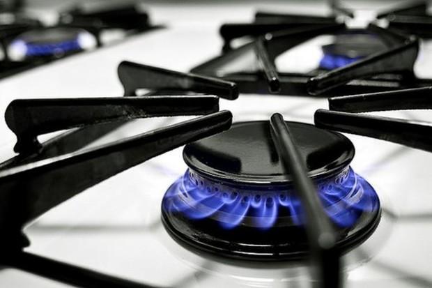 Какую выбрать газовую плиту?