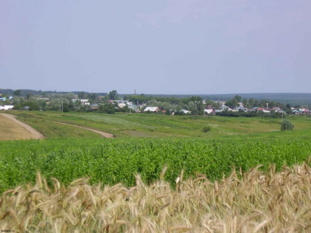 КГГА предлагает ввести самоуправленческий контроль в части регулирования земельных вопросов