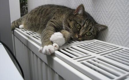 Киевлян предупредили о возможных больших суммах за отопление в январе